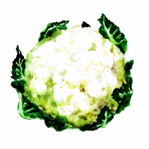 CauliflowerO